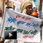 Milk suppliers agitation, milk in india not healthy, dairy farmers, pet, arresting protestors, ibtlv video