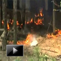 northeast, india, Clashes, kill, Displace, 170, 000, assam riots, news, videos, ibtl