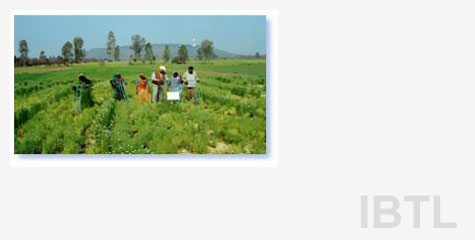 Although agriculture is the major occupation of India, over 3/4th of the agricultural land holdings are uneconomic and unviable. The progress in agricultural technology has not been utilized by these marginal farmers. Regarding seeds, farmers still depend upon seed companies. Most of the farming is rain-fed.