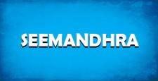 telangana, seemandhra, bjp, pragatiki sopaanam, pratyeka Seemandhra,