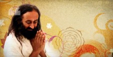 Guru Purnima, Sri Sri Ravi Shankar, America, Hartford, Guru Principle, Meditation is relaxing, guru purnima 2012, guru purnima 2013, ibtl vms, vande matru sanskriti