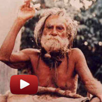 Devraha Baba, Saint survived 250 Years, vrindavan,  Wonders of Yog,